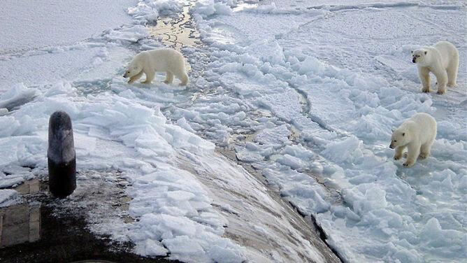 Arktyka bywała zaskakująco ciepła